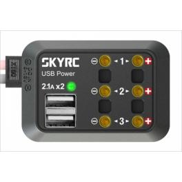 Skyrc Distribuidor de Voltaje DC Bananas 4mm