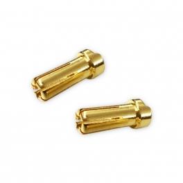 MR33 Conectores 5mm Perfil Bajo